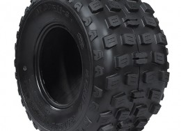 Kenda Knarly Tire 22